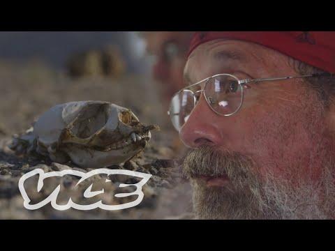 Polar Bear Man Returns To The Arctic: Vice Reports (part 1) video