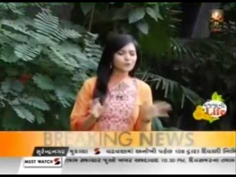 'Passport' Gujarati movie Artist Diwali Celebration || Majja ni Life || Sandesh News thumbnail
