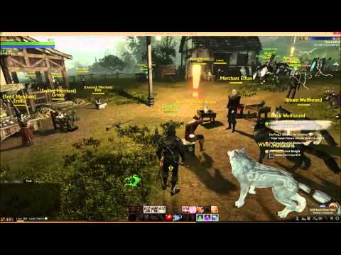 How to get pet Archeage