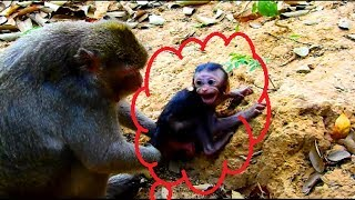 100% Broken heart! Baby cry and shout very loudly nearly convulsive | Why kidnapper do like this ?