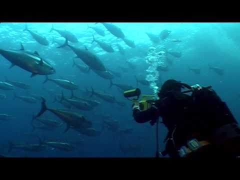 Making of 5D film in Malta - The Changing Oceans Expedition [EN]