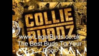 Watch Collie Buddz Young Girl video