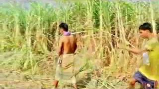 Download Awesome Funny Video Form Sirajgonj 3Gp Mp4