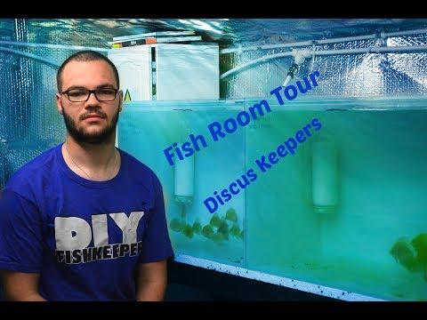 G&R Discus UK Fish Room Tour