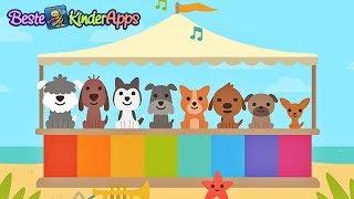 Kleinkinder lernen 🐕 Zahlen zählen (deutsch) 🐾 Sago Mini Hunde Kindergarten App
