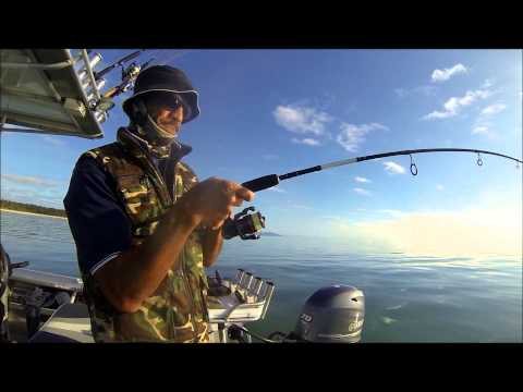 SNAPPER FISHING NEW ZEALAND SOFTBAIT SNAPPER FISHING SHALLOW WATER MATAKANA ISLAND