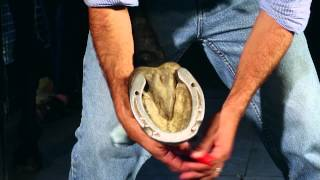 The Perfect Stud Kit: How To Stud Your Horseshoes