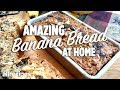 How to Make Amazing Banana Bread With Nuts and Dark Chocolate | You Can Cook That | Allrecipes.com