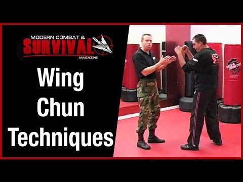 Wing Chun Techniques For Street Fight Self Defense Image 1