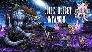 """Guide budget """"Le mepris de l'Intangir"""" Final Fantasy Brave Exvius"""