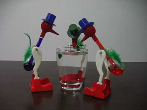 Drinking Bird Experiment Drinking Bird