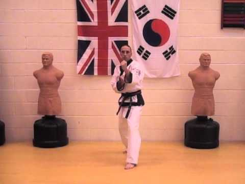 Tang Soo Do Basics Part 3