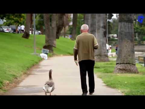 PART 2 - 5 वीडियो जो इंसानियत पर आपका विश्वास मज़बूत कर देंगे // RESTORE YOUR FAITH HUMANITY