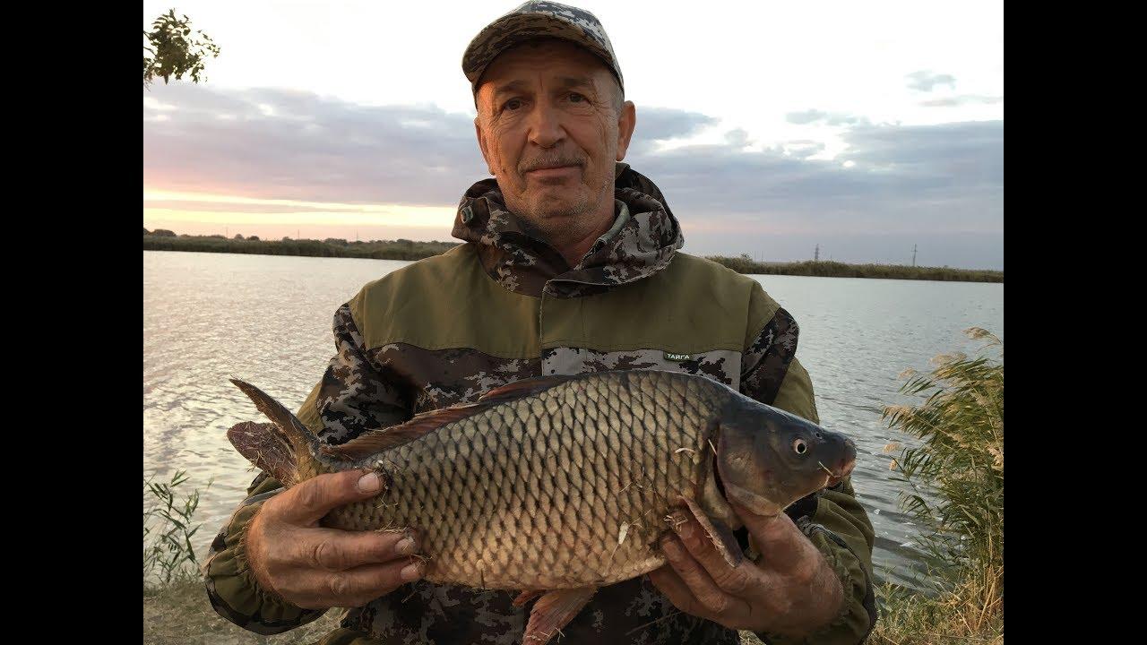 река дон ловля рыбы