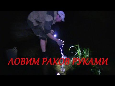 ловля раков по берегу ночью