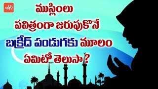 Special Story of Bakrid Festival | Why We Celebrate Bakrid | Significance of Bakrid | YOYOTV Channel