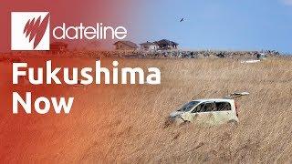 Fukushima - After The Disaster