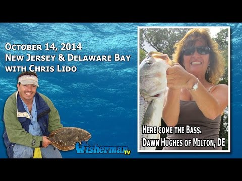October 14, 2014 New Jersey/Delaware Bay Fishing Report with Chris Lido
