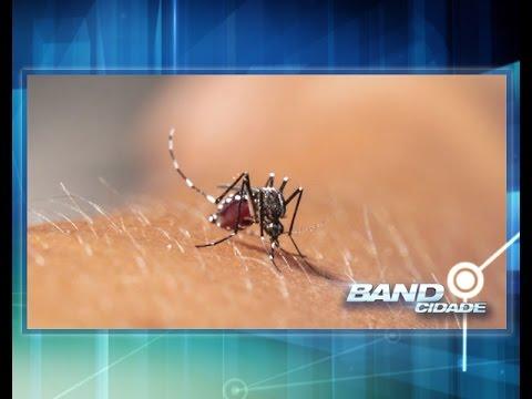 FVS confirma dois casos suspeitos de febre chikungunya em Manaus