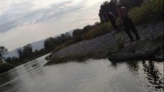 peshkim ne greqi
