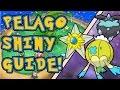 EASY NEW SHINY METHOD! - Best Pokemon Pelago Shiny Hunting Guide!!!