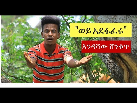 Endashaw Abebe - Weye Adefaferu [NEW! Ethiopian Music Video 2017] Official Video