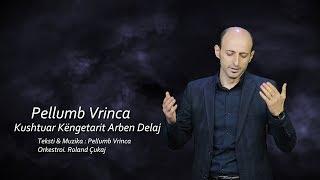 Download Lagu Pellumb Vrinca - Kushtuar Kèngetarit Arben Delaj Gratis STAFABAND