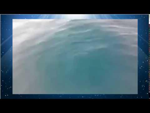خطير: سمك قرش كبير يظهر بساحل مرتيل