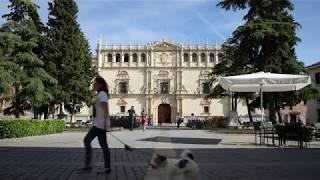 Reformas de la fachada del Colegio Mayor de San Ildefonso
