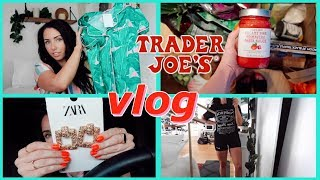 VLOG | Crazy Shopping Day, Trader Joes Haul, Eyebrow Hack, Skincare Updates