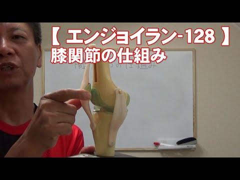 #128 膝関節の仕組み/がんばらないで楽に長く走る【エンジョイラン】