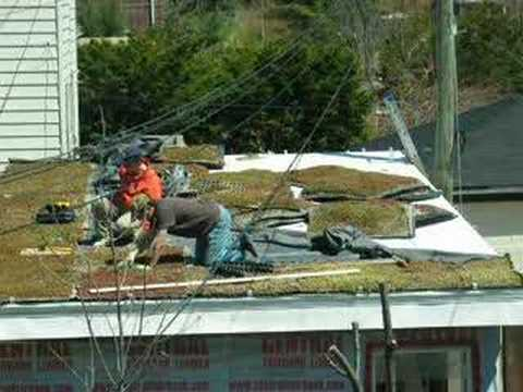 Green Roof Panel Installation