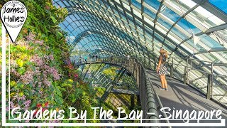 GARDENS BY THE BAY - Supertree Grove - Spectra Water Show - SINGAPORE   Barbster360 Travel Vlog