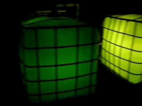 algae bioreactor at night