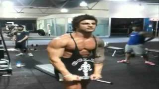 Zyzz: Come At Me Bro
