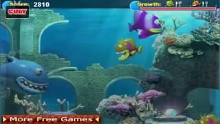 Trò chơi Cá lớn nuốt cá bé - cu lỳ chơi game #28 - funny gameplay fishing tales