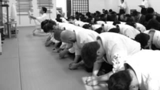 Tenshin Aikido Cody Lewallen