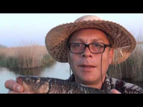 рыбалка в калмыкии соленое
