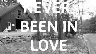 Music Video Never Been in Love by COBRA STARSHIP ICONA POP