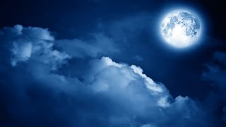 Sleep Music, Calm Music for Sleeping, Delta Waves, Insomnia, Relaxing Music, 8 Hour Sleep, ☯3183