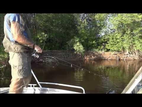 ловля в 2014 году видео