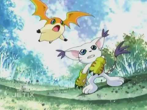 Gatomon And Patamon Patamon and Gatomon! -...