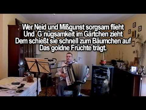 Traditional - Ich Wollt Ein Baeumlein Steigen