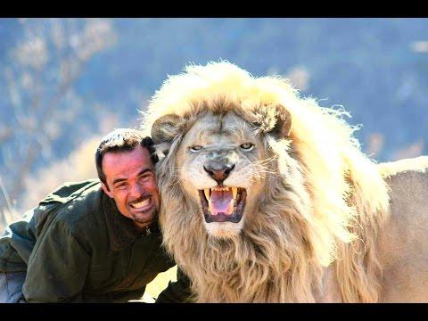 Невероятная Дружба Людей И Хищных Животных