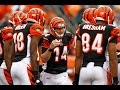 Cincinnati Bengals Are Going To Win The AFC North In 2014