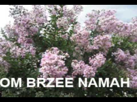 End financial worries Chanting  Om Brzee namah