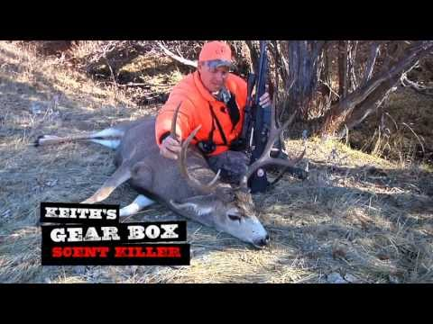 Long Range Mule Deer Hunt   Montana Hunting