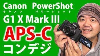 APS-Cコンデジ!Canon PowerShot G1 X Mark III ファーストインプレッション流石のRAW現像耐性だった