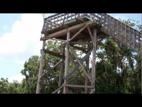 Observation Tower at Lake Kissimmee State Park