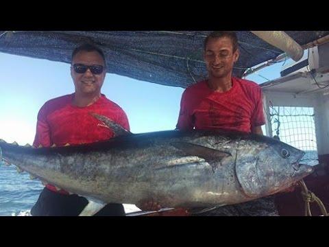 шоу ловля тунца